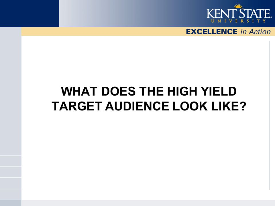 WHAT DOES THE HIGH YIELD TARGET AUDIENCE LOOK LIKE