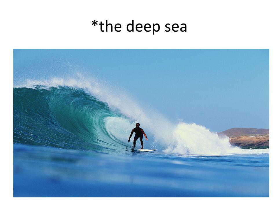 *the deep sea