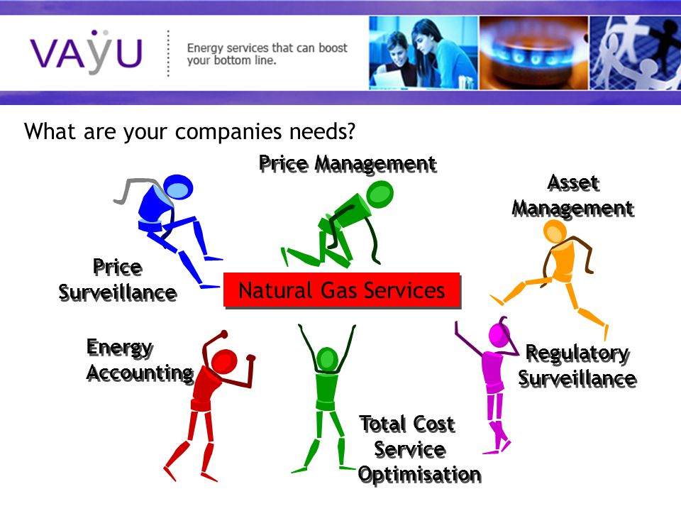 Understanding today's rapidly evolving energy market Natural Gas Services Energy Accounting Energy Accounting Price Surveillance Price Surveillance Total Cost Service Optimisation Total Cost Service Optimisation Price Management Regulatory Surveillance Asset Management Asset Management What are your companies needs?
