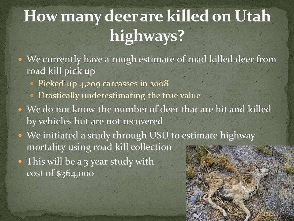 We currently have a rough estimate of road killed deer from road kill pick up Picked-up 4,209 carcasses in 2008 Drastically underestimating the true v