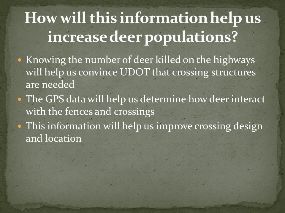 Knowing the number of deer killed on the highways will help us convince UDOT that crossing structures are needed The GPS data will help us determine h