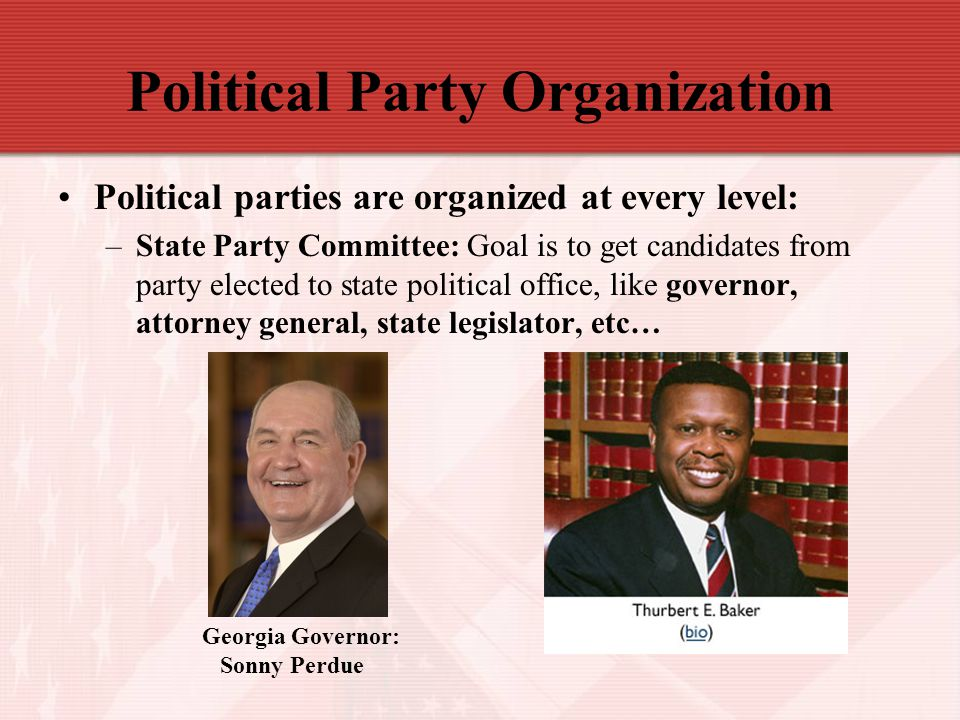 Political Party Organization Political parties are organized at every level: –State Party Committee: Goal is to get candidates from party elected to s