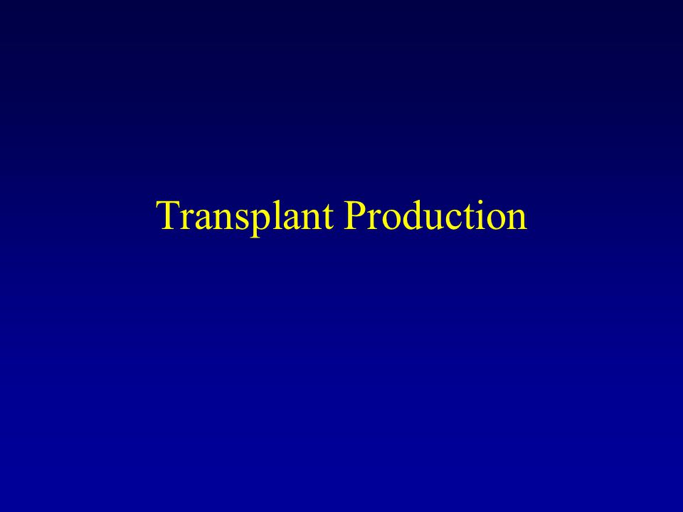 Transplant Production