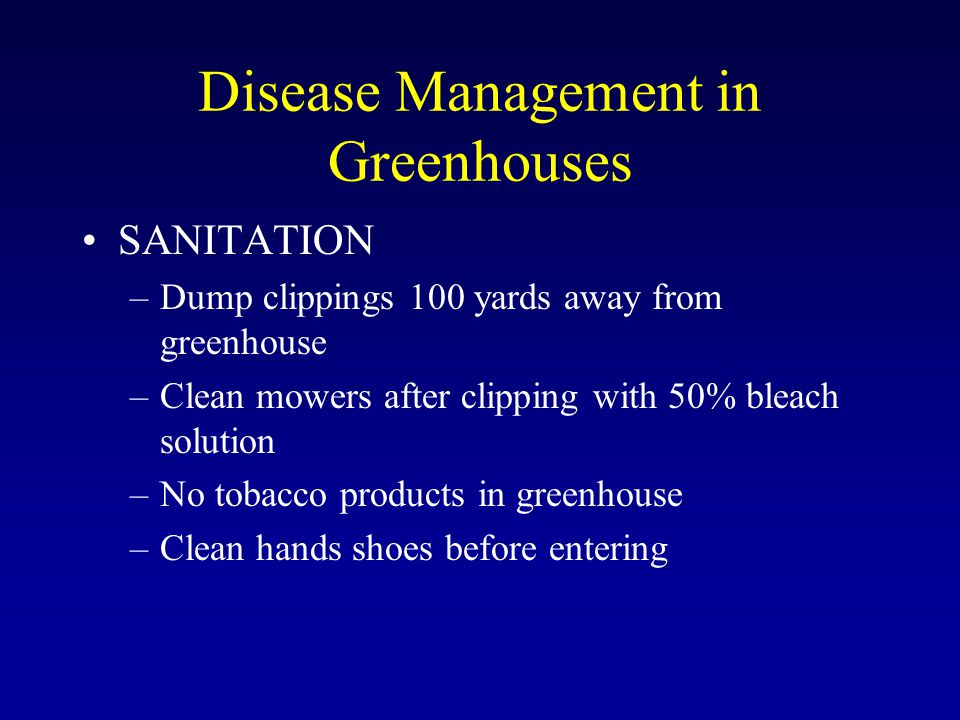Disease Management in Greenhouses SANITATION –Dump clippings 100 yards away from greenhouse –Clean mowers after clipping with 50% bleach solution –No tobacco products in greenhouse –Clean hands shoes before entering