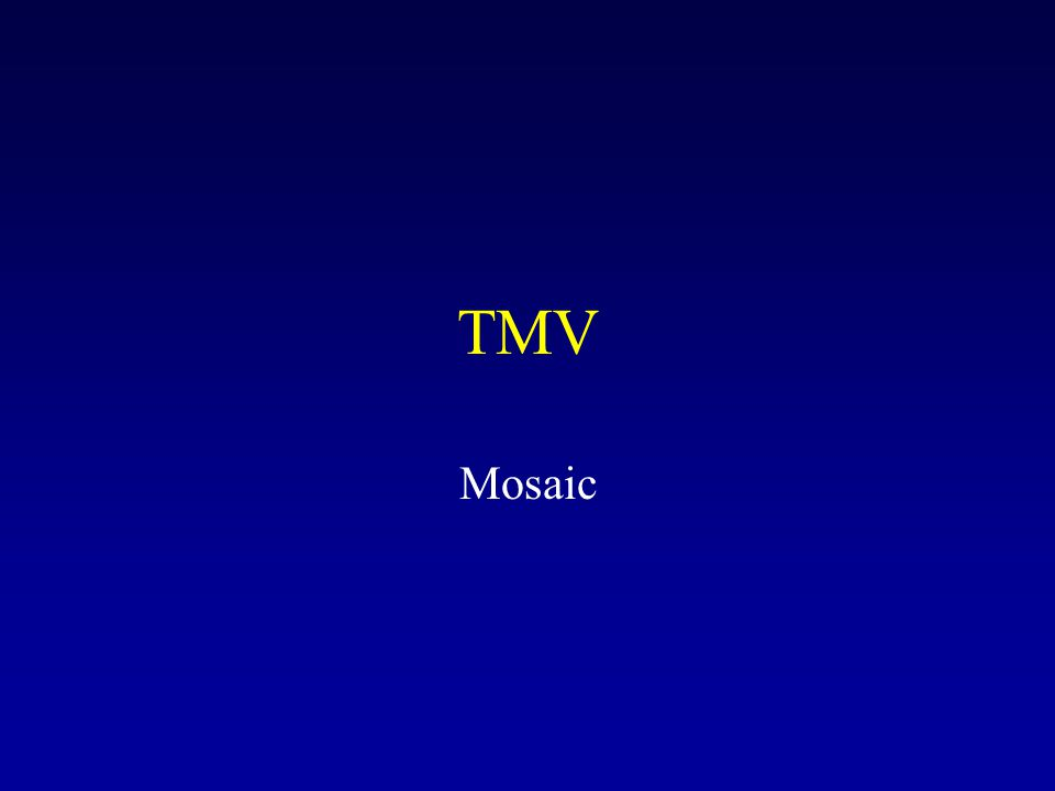 TMV Mosaic