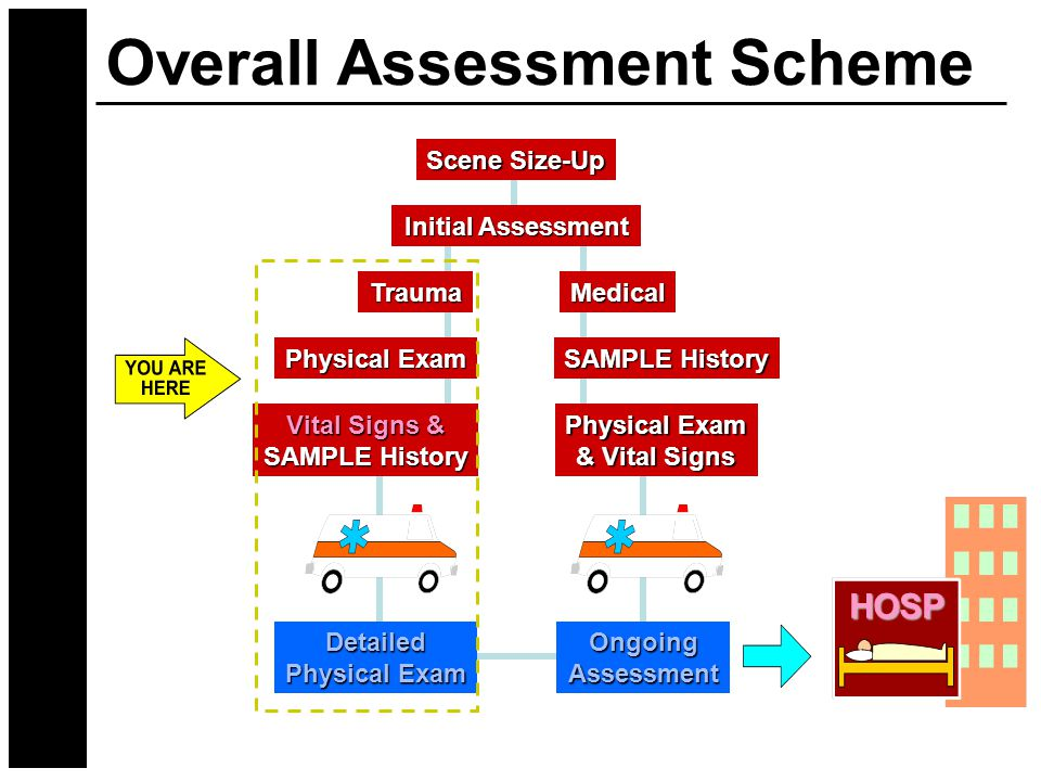 Overall Assessment Scheme Scene Size-Up Initial Assessment TraumaMedical Physical Exam Vital Signs & SAMPLE History Physical Exam & Vital Signs Detailed Physical Exam OngoingAssessment HOSP