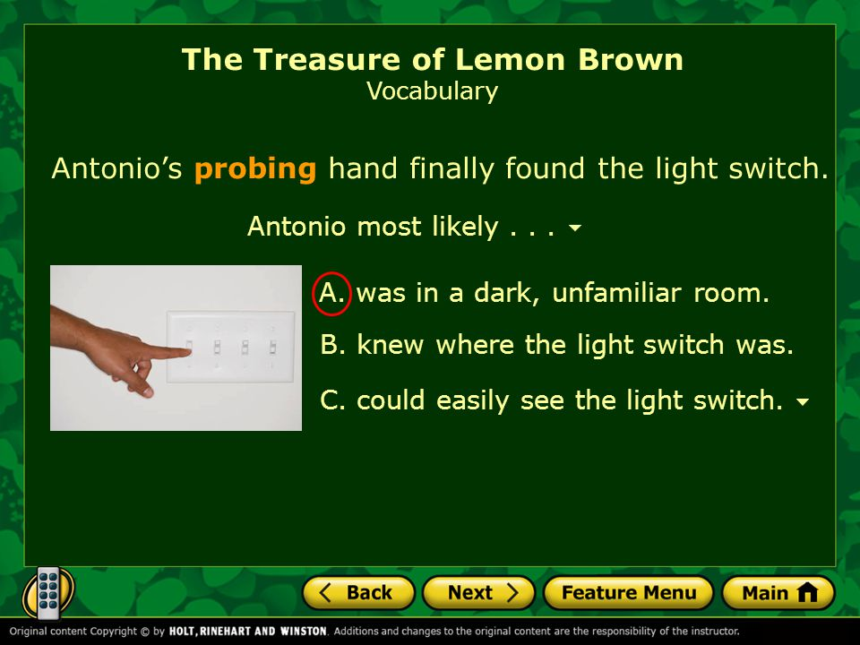 Antonio most likely... Antonio's probing hand finally found the light switch. The Treasure of Lemon Brown Vocabulary A. was in a dark, unfamiliar room