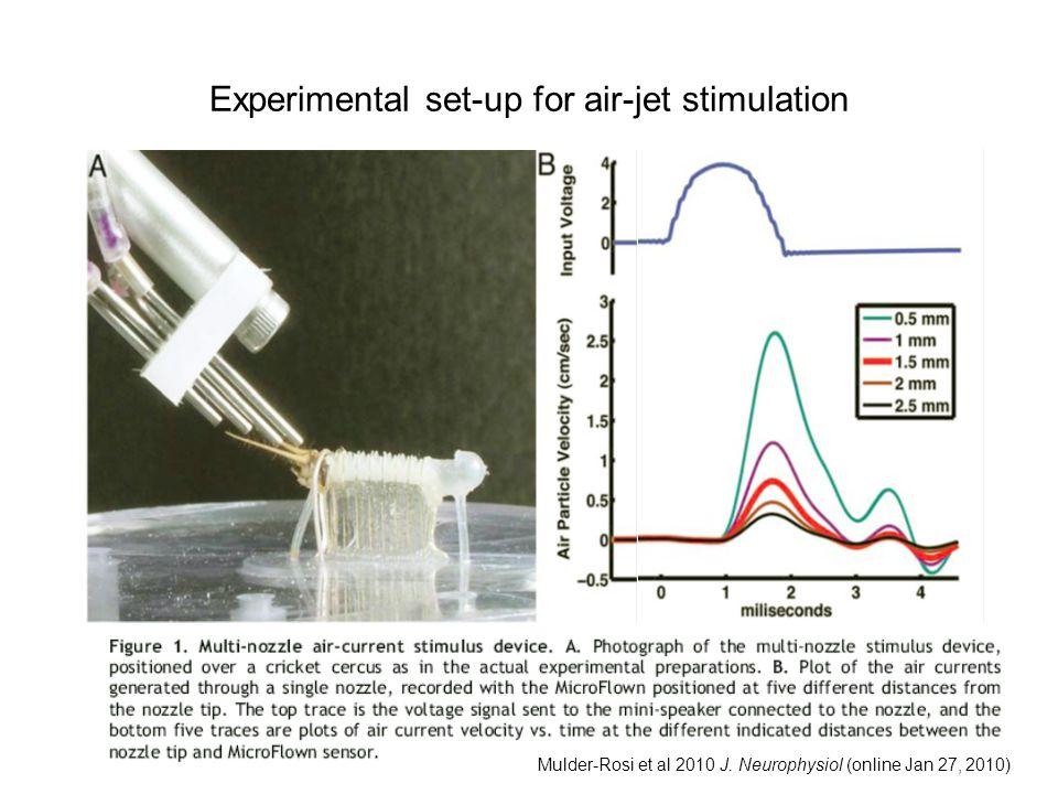 Experimental set-up for air-jet stimulation Mulder-Rosi et al 2010 J. Neurophysiol (online Jan 27, 2010)
