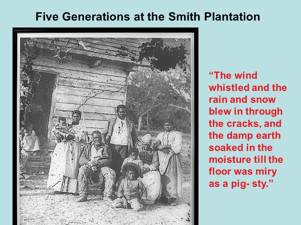 """Five Generations at the Smith Plantation """"The wind whistled and the rain and snow blew in through the cracks, and the damp earth soaked in the moistur"""