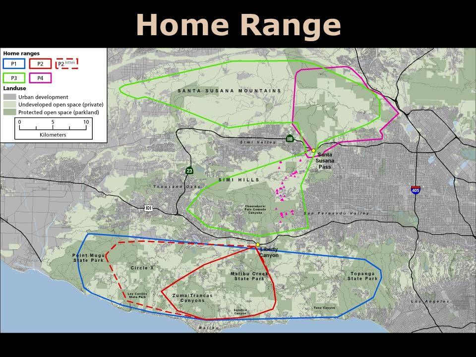 Home Range