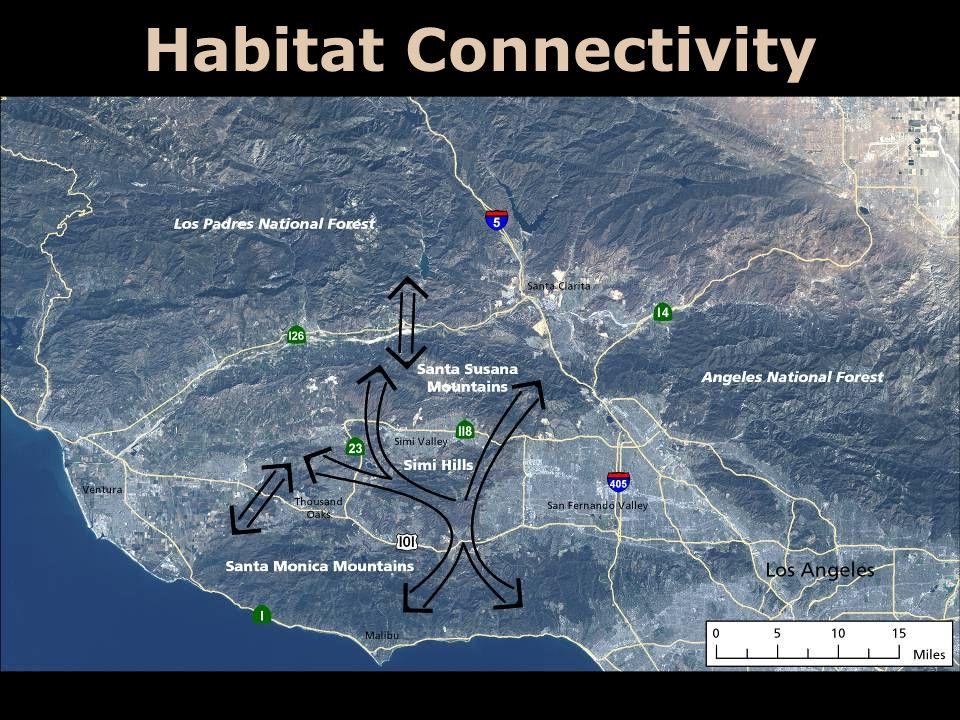 Habitat Connectivity
