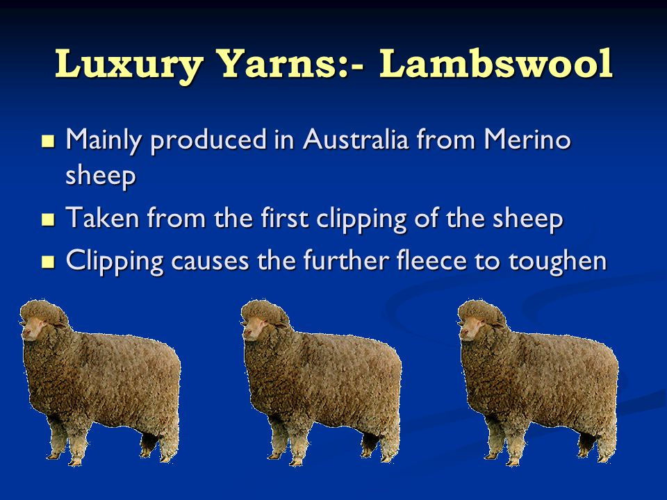 Luxury Yarns:- Lambswool Mainly produced in Australia from Merino sheep Mainly produced in Australia from Merino sheep Taken from the first clipping o