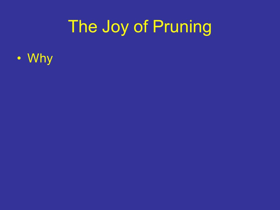 The Joy of Pruning Why