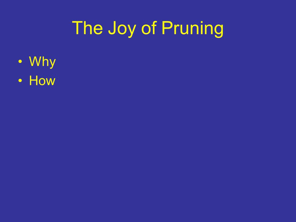 The Joy of Pruning Why How