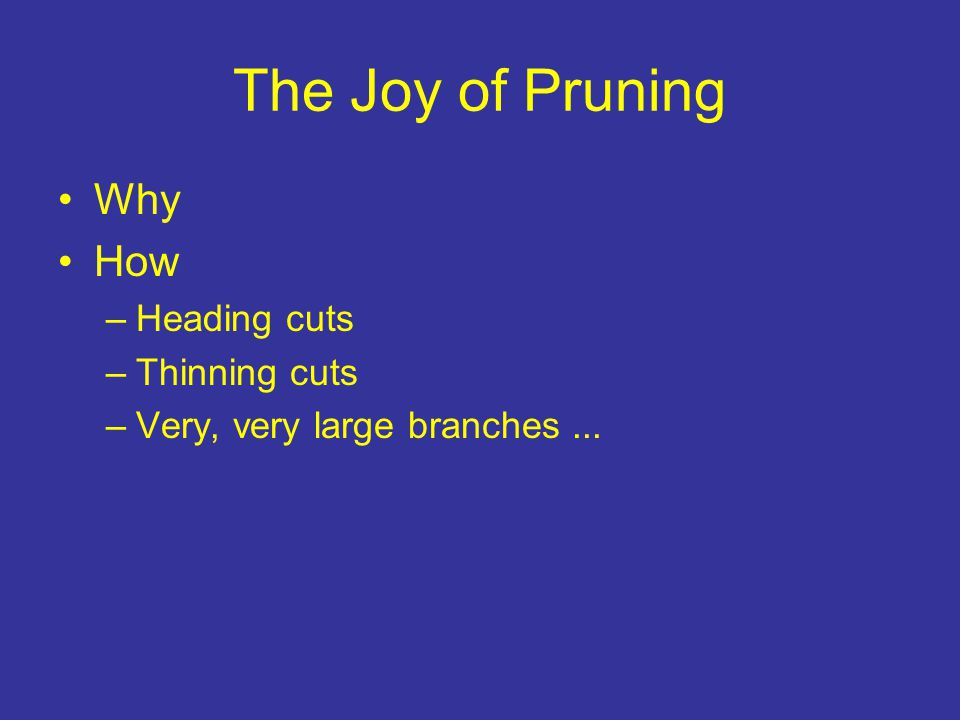 The Joy of Pruning Why How –Heading cuts –Thinning cuts –Very, very large branches...