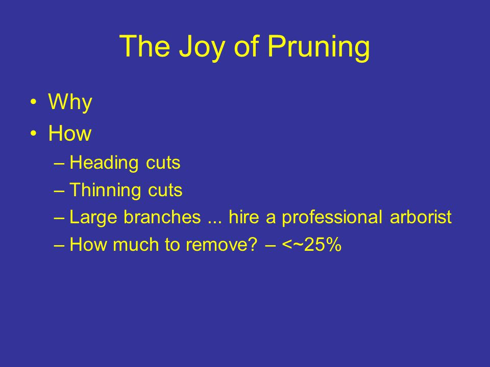 The Joy of Pruning Why How –Heading cuts –Thinning cuts –Large branches...