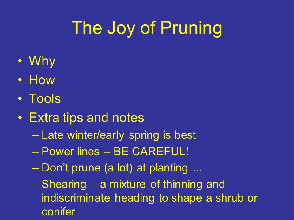 The Joy of Pruning Why How Tools Extra tips and notes –Late winter/early spring is best –Power lines – BE CAREFUL! –Don't prune (a lot) at planting...