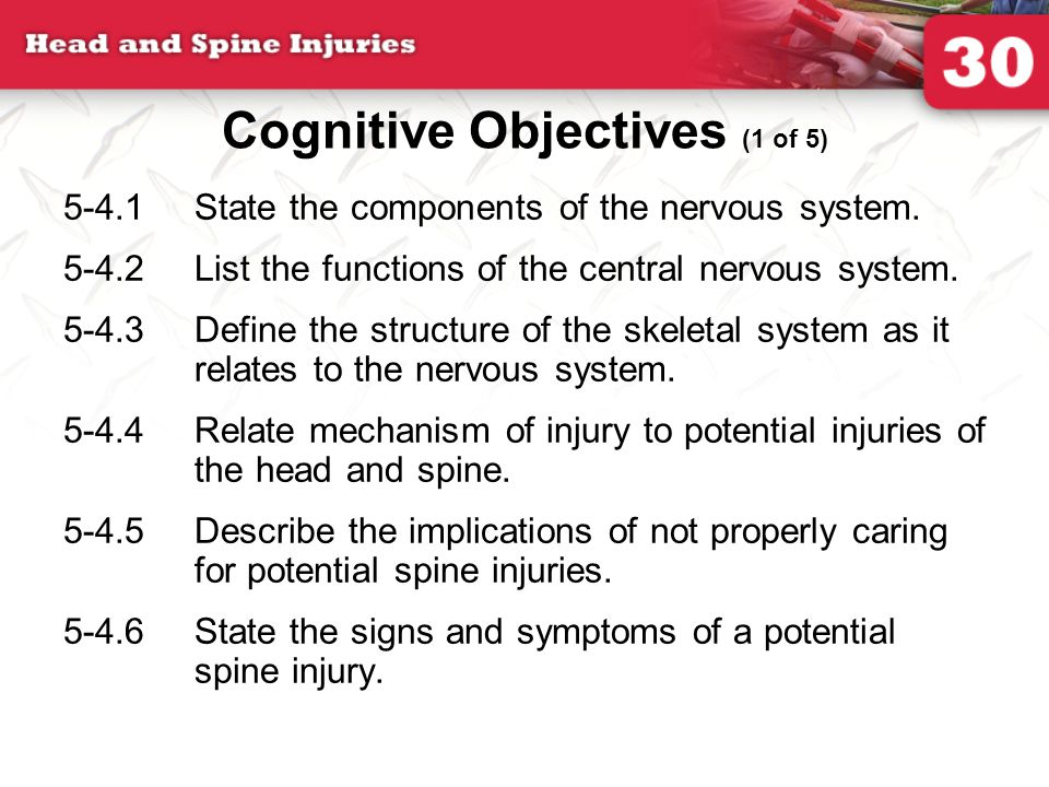 5-4.1State the components of the nervous system. 5-4.2List the functions of the central nervous system. 5-4.3Define the structure of the skeletal syst