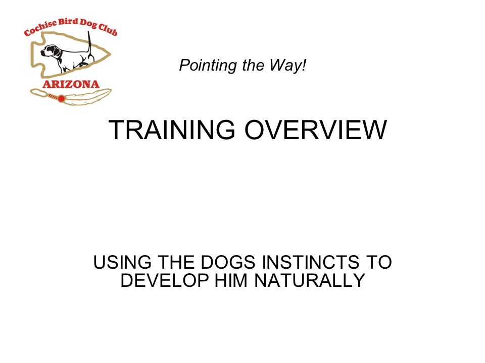 TRAINING OVERVIEW USING THE DOGS INSTINCTS TO DEVELOP HIM NATURALLY Pointing the Way!