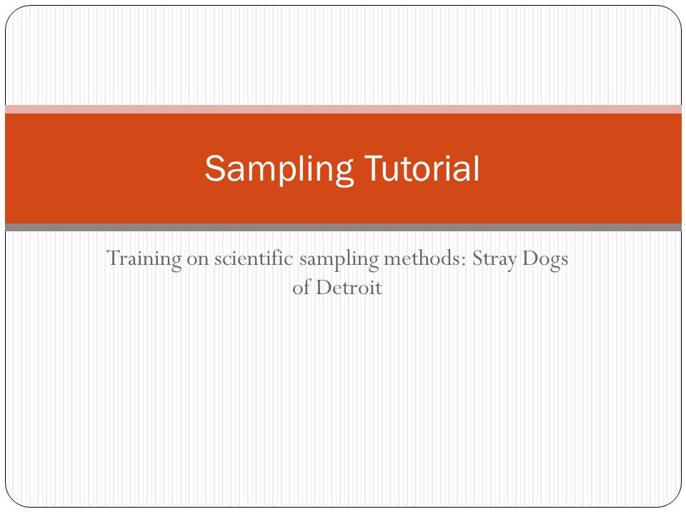 Training on scientific sampling methods: Stray Dogs of Detroit Sampling Tutorial