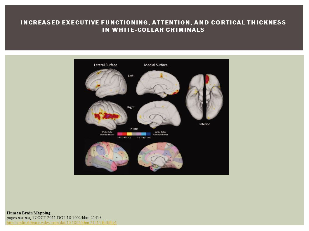 INCREASED EXECUTIVE FUNCTIONING, ATTENTION, AND CORTICAL THICKNESS IN WHITE ‐ COLLAR CRIMINALS Human Brain Mapping pages n/a-n/a, 17 OCT 2011 DOI: 10.1002/hbm.21415 http://onlinelibrary.wiley.com/doi/10.1002/hbm.21415/full#fig1 http://onlinelibrary.wiley.com/doi/10.1002/hbm.21415/full#fig1