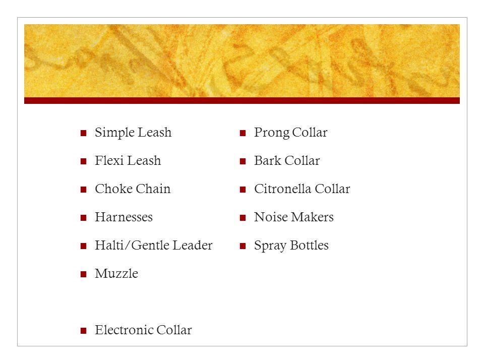 Simple Leash Flexi Leash Choke Chain Harnesses Halti/Gentle Leader Muzzle Electronic Collar Prong Collar Bark Collar Citronella Collar Noise Makers Sp