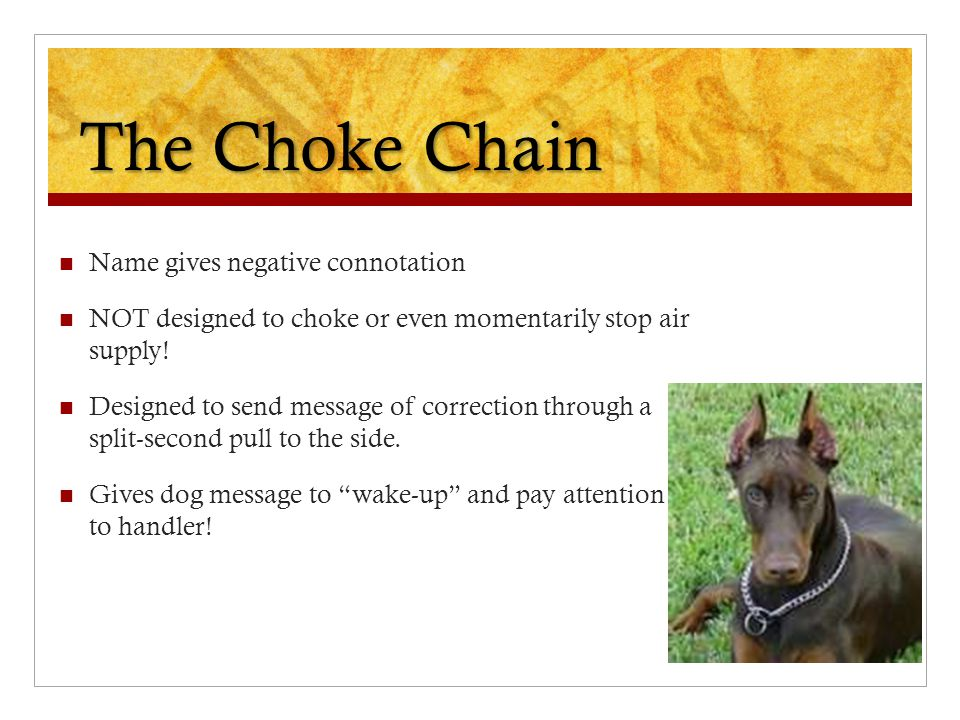 The Choke Chain Name gives negative connotation NOT designed to choke or even momentarily stop air supply! Designed to send message of correction thro