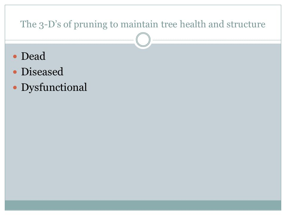 The 3-D's of pruning to maintain tree health and structure Dead Diseased Dysfunctional