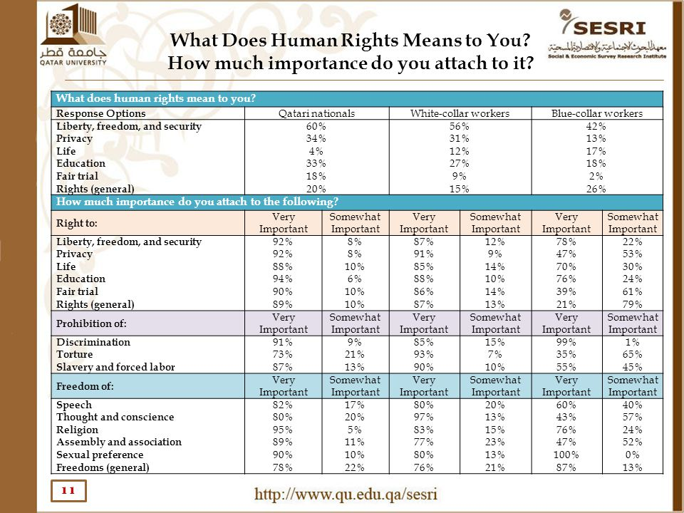 What Does Human Rights Means to You? How much importance do you attach to it? 11 What does human rights mean to you? Response Options Qatari nationals