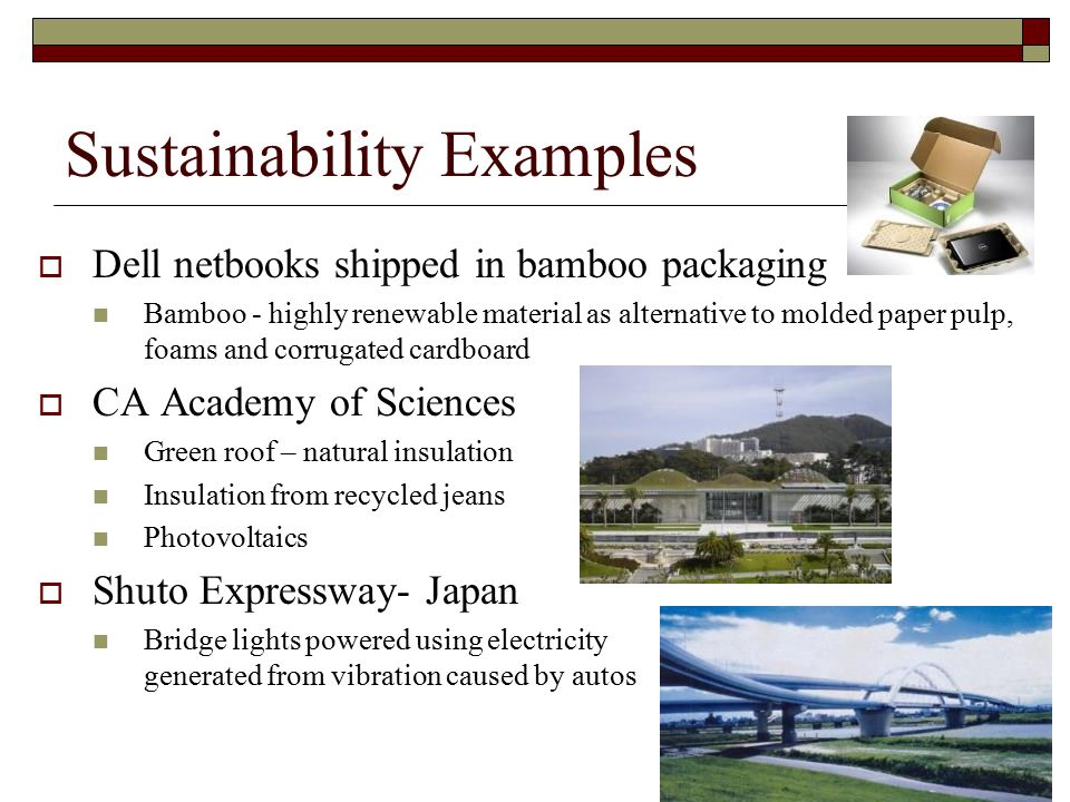Sustainability Examples  Dell netbooks shipped in bamboo packaging Bamboo - highly renewable material as alternative to molded paper pulp, foams and corrugated cardboard  CA Academy of Sciences Green roof – natural insulation Insulation from recycled jeans Photovoltaics  Shuto Expressway- Japan Bridge lights powered using electricity generated from vibration caused by autos