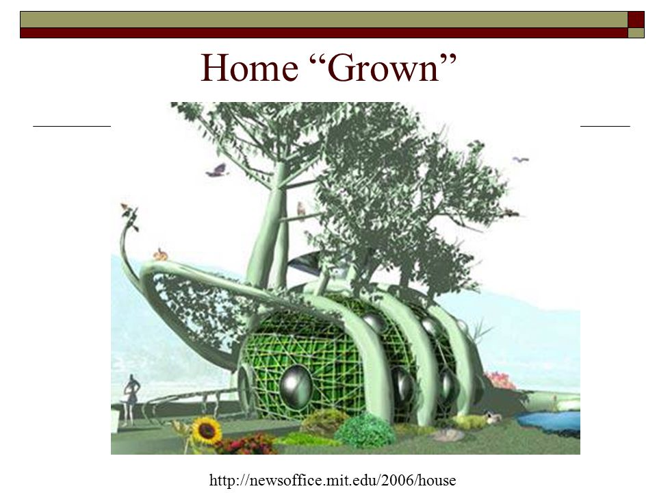 http://newsoffice.mit.edu/2006/house Home Grown