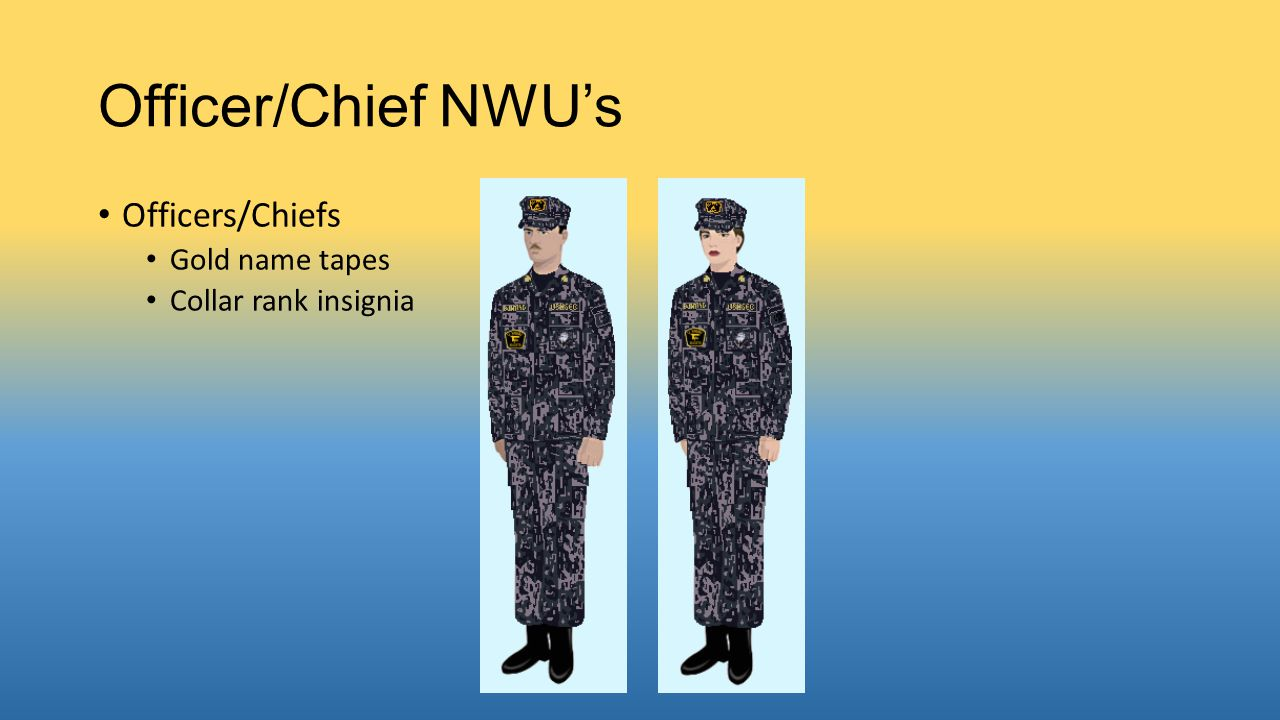 Officer/Chief NWU's Officers/Chiefs Gold name tapes Collar rank insignia