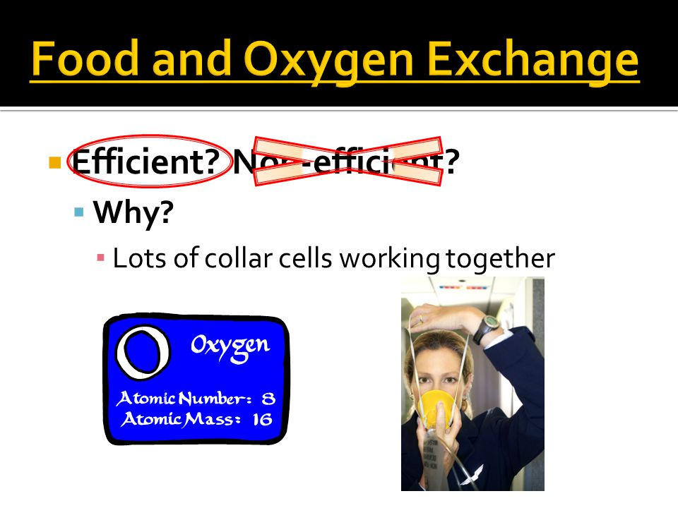  Efficient Non-efficient  Why ▪ Lots of collar cells working together