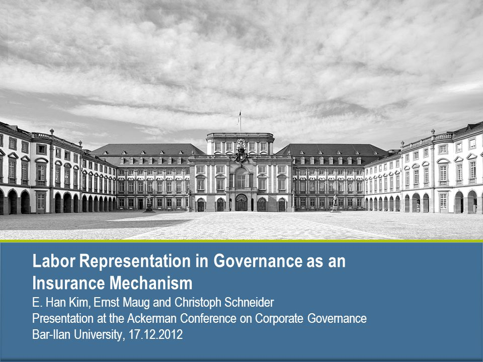 Labor Representation in Governance as an Insurance Mechanism E.