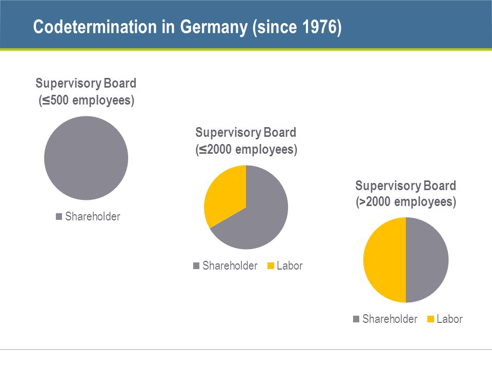 Codetermination in Germany (since 1976)