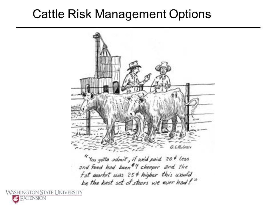 Cattle Risk Management Options