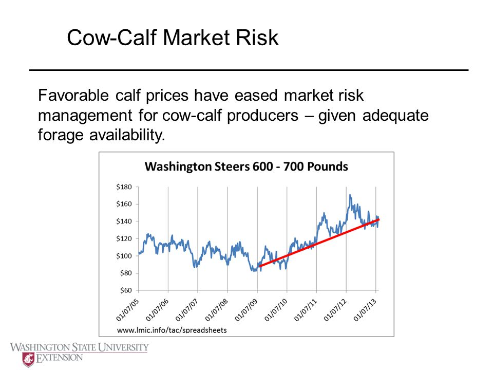 Cow-Calf Market Risk Favorable calf prices have eased market risk management for cow-calf producers – given adequate forage availability.
