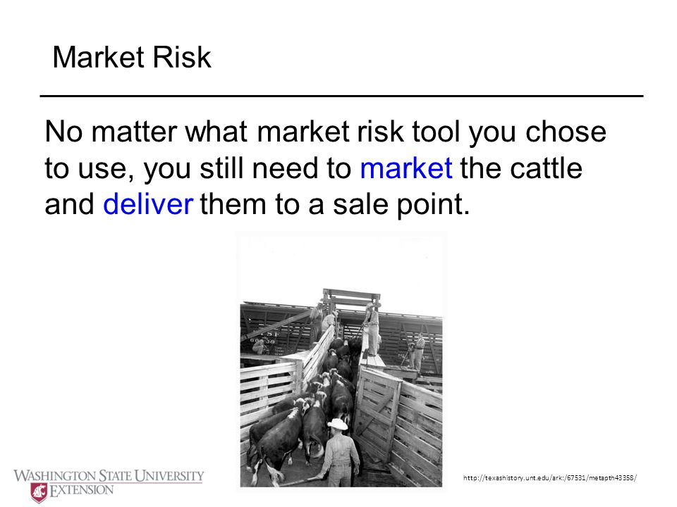 Market Risk No matter what market risk tool you chose to use, you still need to market the cattle and deliver them to a sale point.