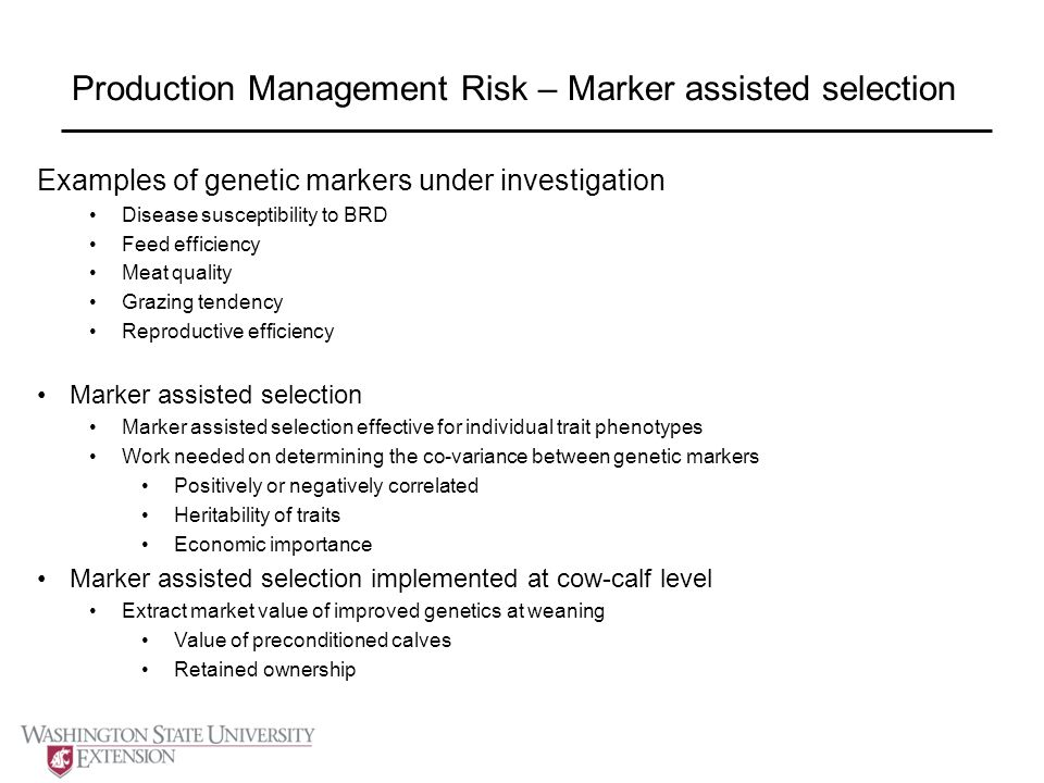 Production Management Risk – Marker assisted selection Examples of genetic markers under investigation Disease susceptibility to BRD Feed efficiency Meat quality Grazing tendency Reproductive efficiency Marker assisted selection Marker assisted selection effective for individual trait phenotypes Work needed on determining the co-variance between genetic markers Positively or negatively correlated Heritability of traits Economic importance Marker assisted selection implemented at cow-calf level Extract market value of improved genetics at weaning Value of preconditioned calves Retained ownership