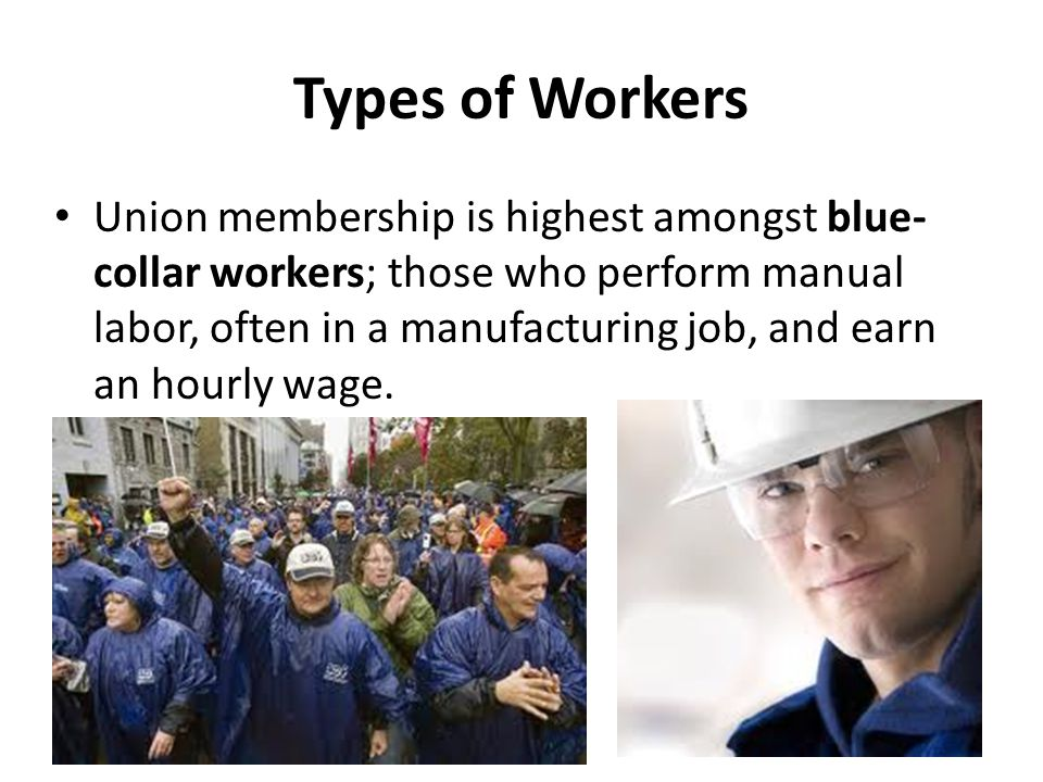 Types of Workers Union membership is highest amongst blue- collar workers; those who perform manual labor, often in a manufacturing job, and earn an h