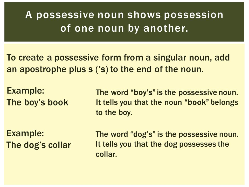 A possessive noun shows possession of one noun by another.