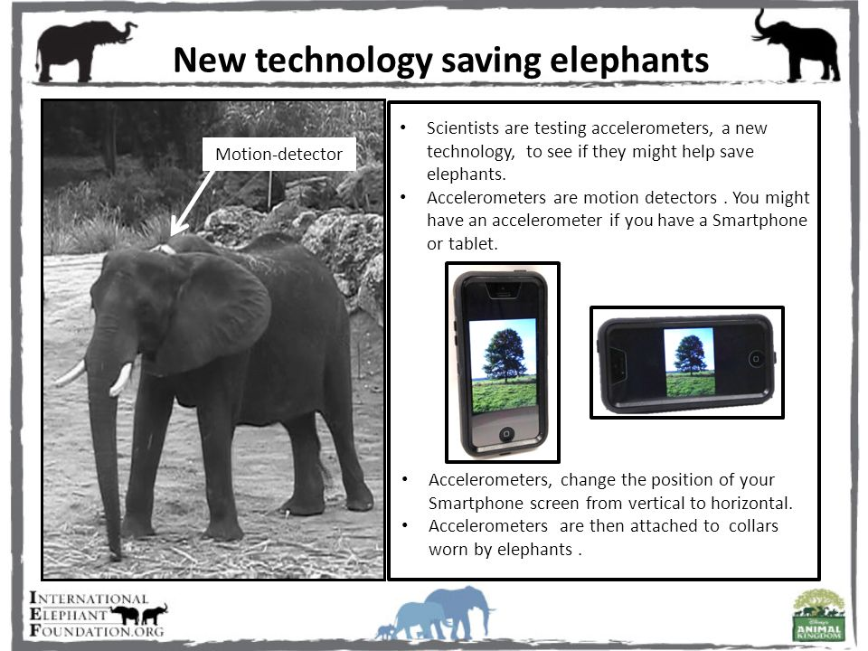 New technology saving elephants Motion-detector Accelerometers, change the position of your Smartphone screen from vertical to horizontal.