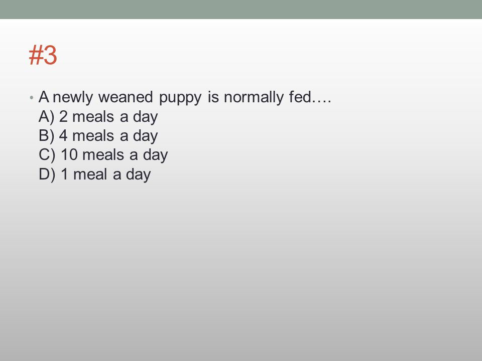 #3 A newly weaned puppy is normally fed….