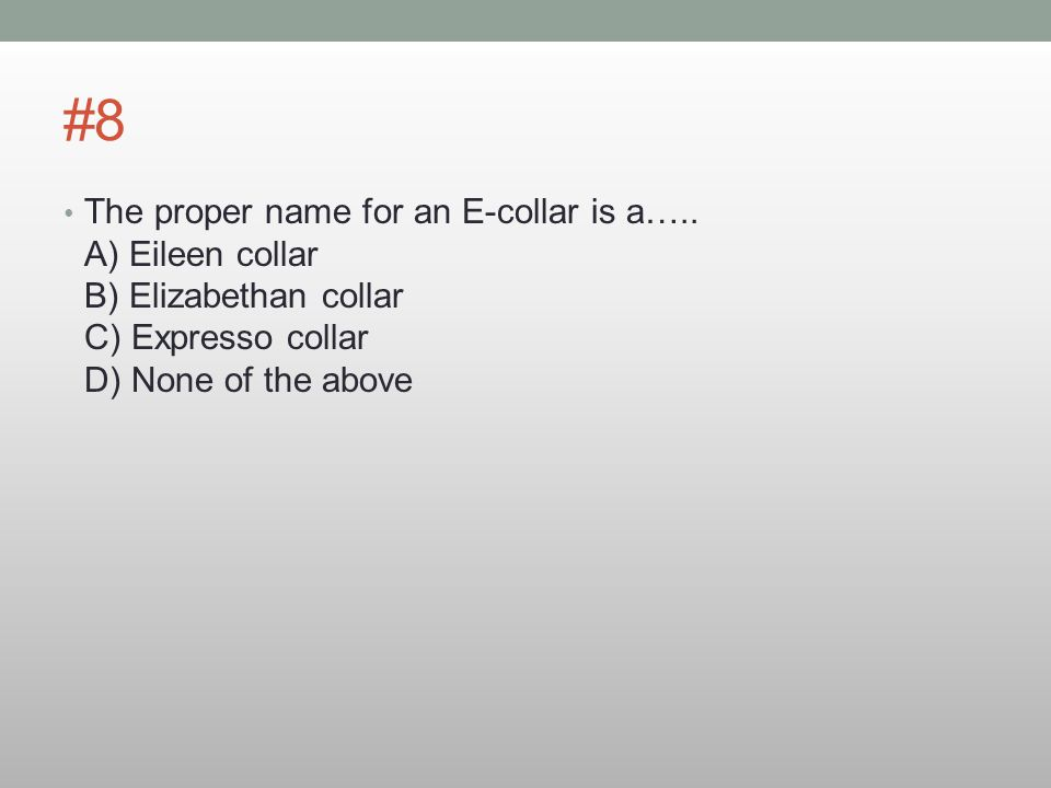 #8 The proper name for an E-collar is a…..