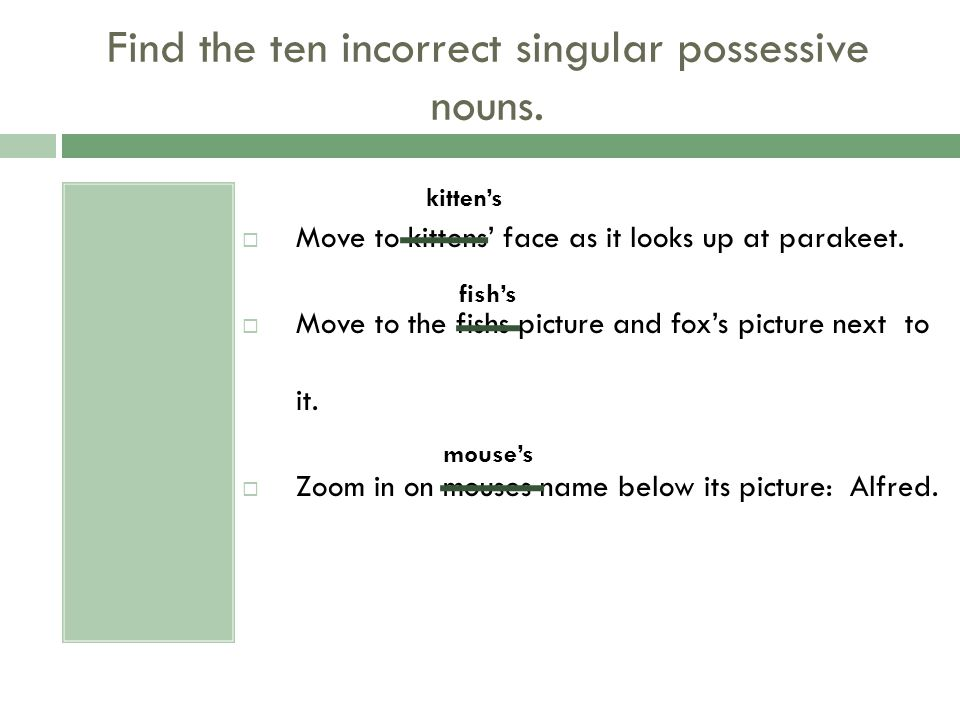 Find the ten incorrect singular possessive nouns.  Move to kittens' face as it looks up at parakeet.  Move to the fishs picture and fox's picture ne
