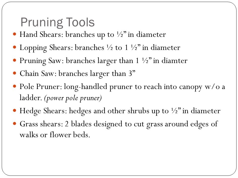 Pruning Tools Hand Shears: branches up to ½ in diameter Lopping Shears: branches ½ to 1 ½ in diameter Pruning Saw: branches larger than 1 ½ in diamter Chain Saw: branches larger than 3 Pole Pruner: long-handled pruner to reach into canopy w/o a ladder.