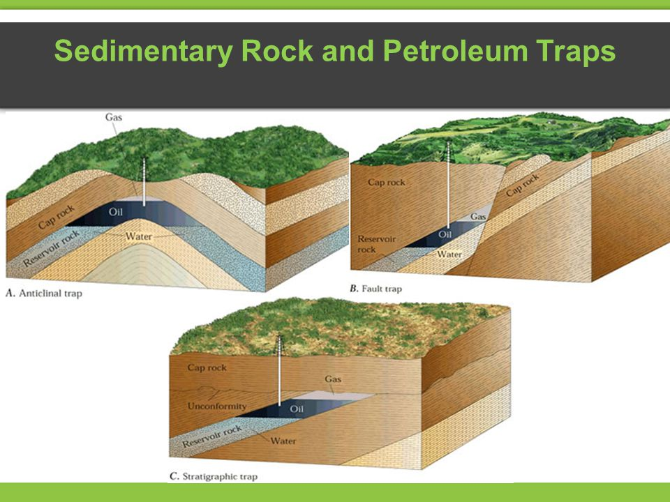 Sedimentary Rock and Petroleum Traps