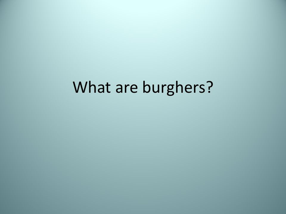What are burghers?