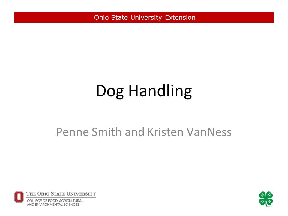 Dog Handling Penne Smith and Kristen VanNess Ohio State University Extension