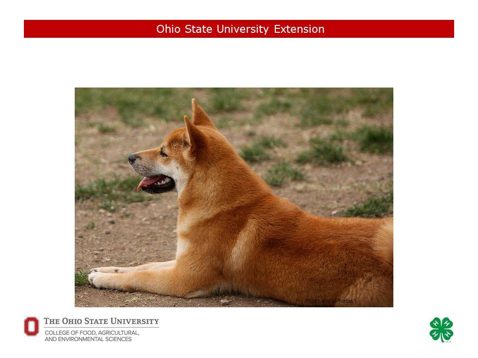 Ohio State University Extension Flickr: jeff_ro